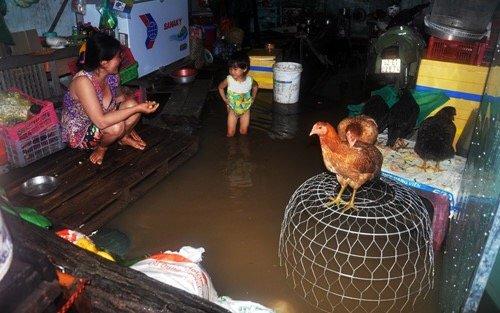 Nhiều người dân ở Sài Gòn đã quá mệt mỏi vì phải liên tiếp 3 ngày sống cùng nước bẩn trong nhà